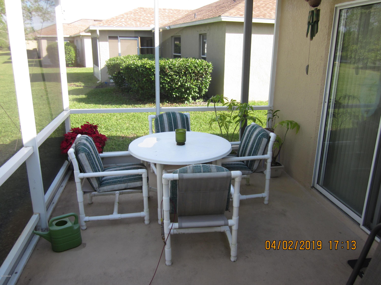 342 Dahoon Holly Daytona Beach - 9
