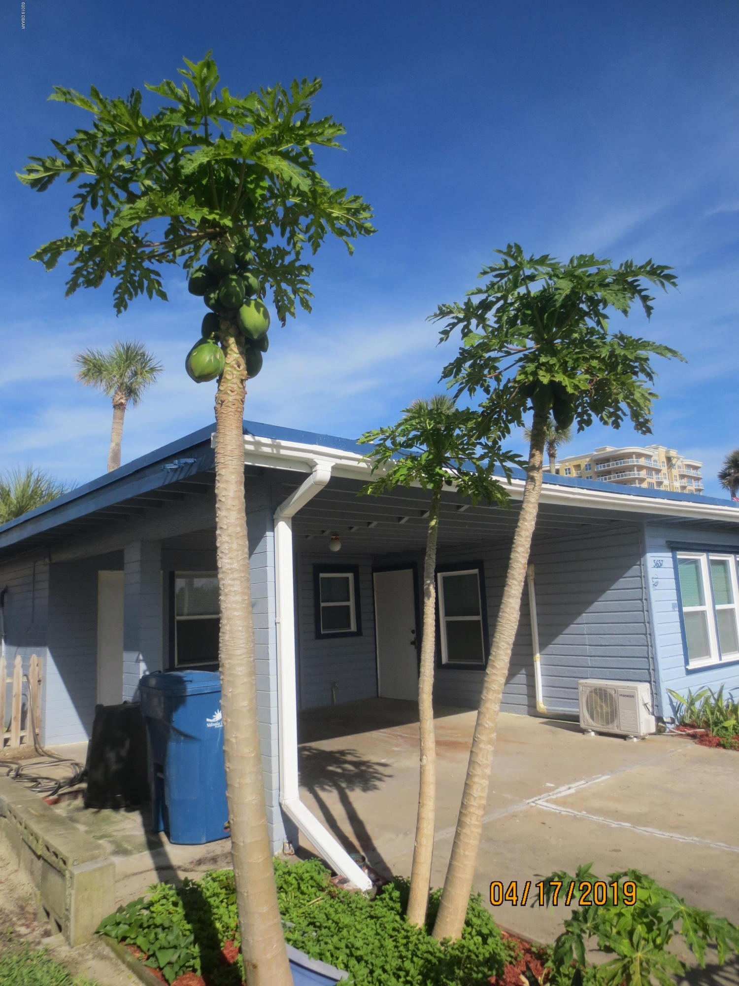 3637 Cardinal Daytona Beach - 6