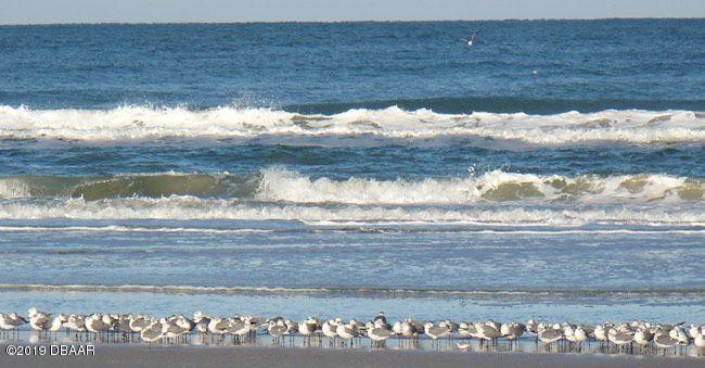 3647 Atlantic Daytona Beach - 11