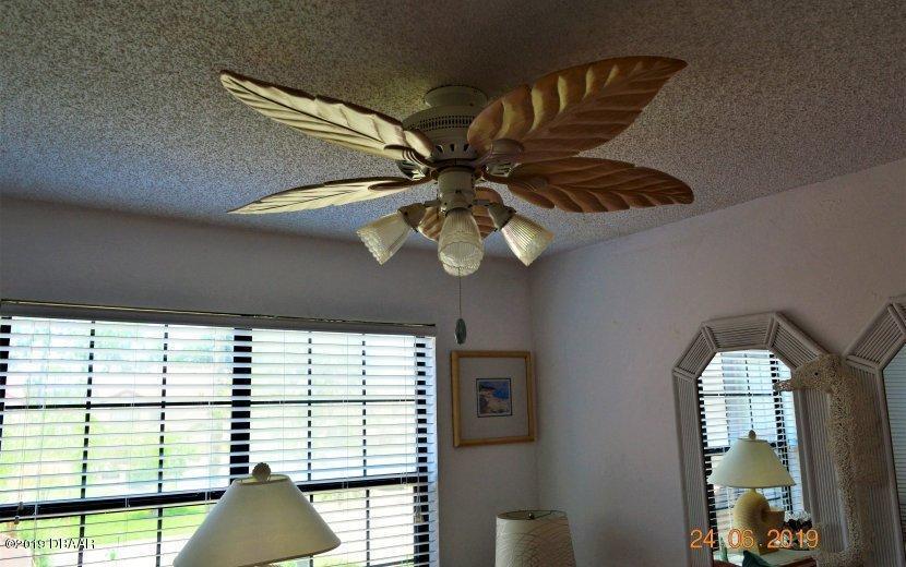 248 Palm Sparrow Daytona Beach - 4