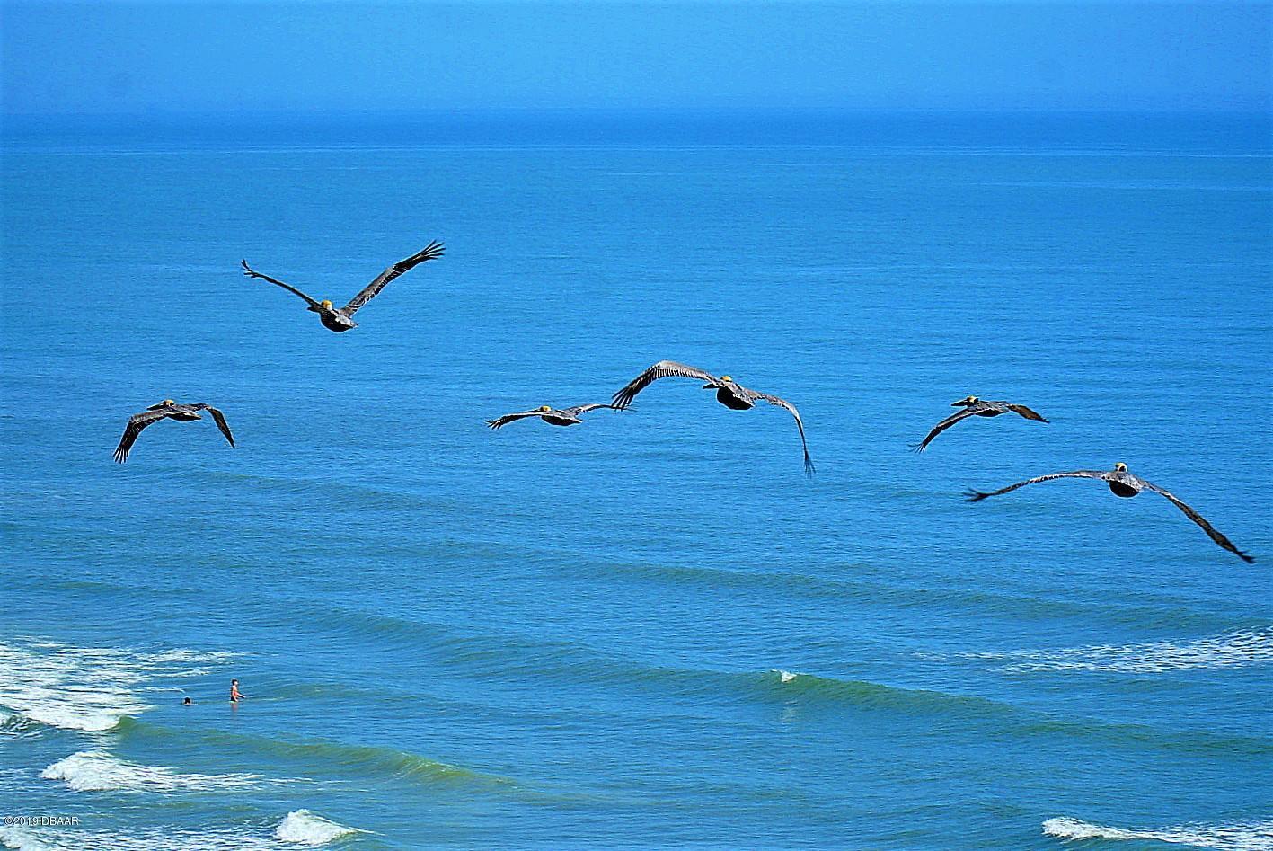 2900 Atlantic Daytona Beach - 12