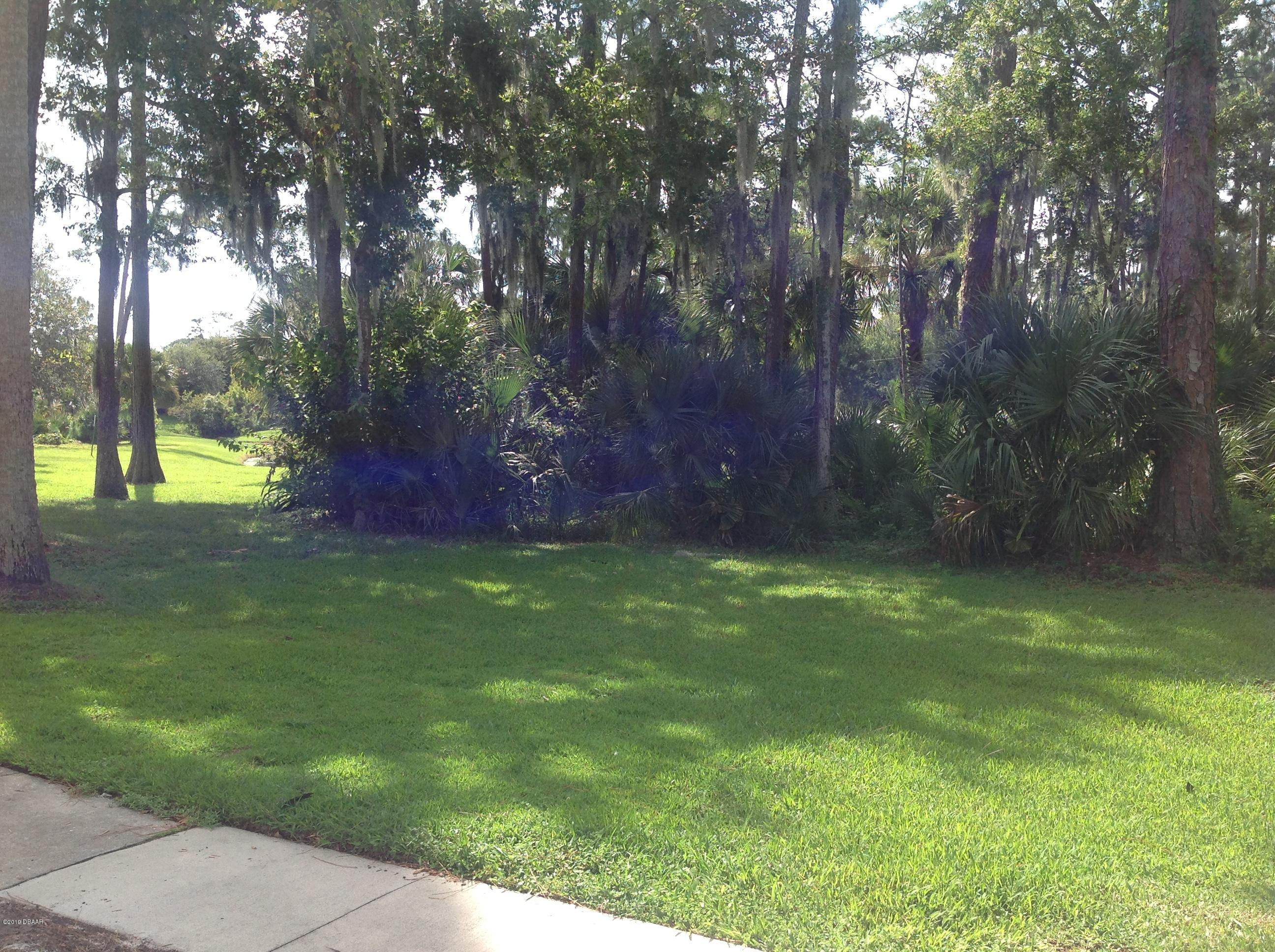1600 Big Tree Daytona Beach - 11