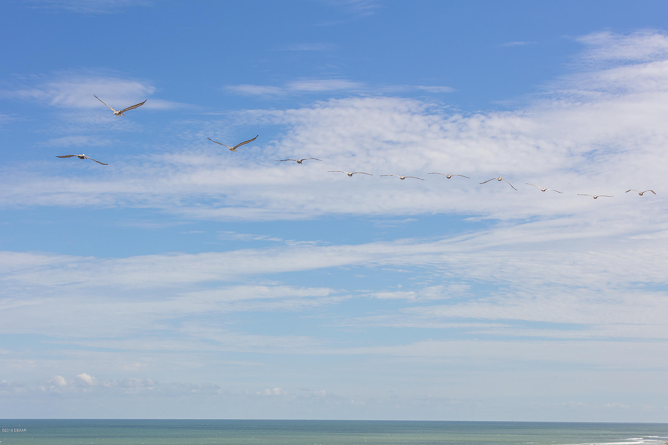 2967 Atlantic Daytona Beach - 53
