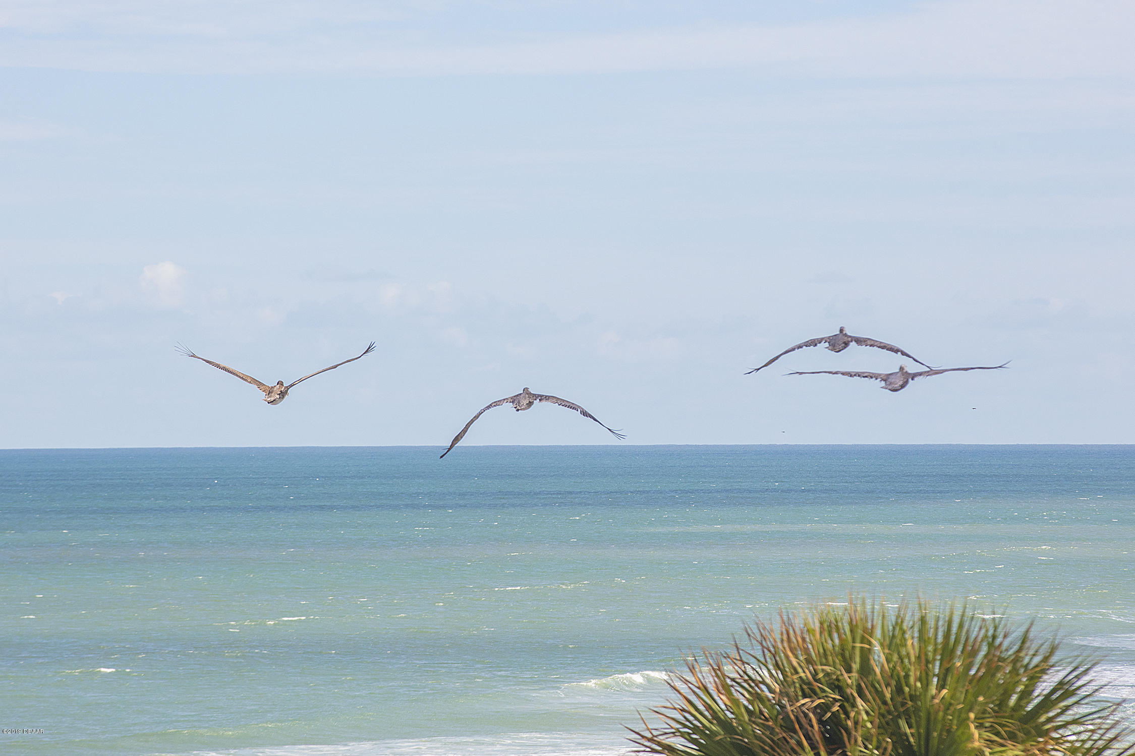 2967 Atlantic Daytona Beach - 55