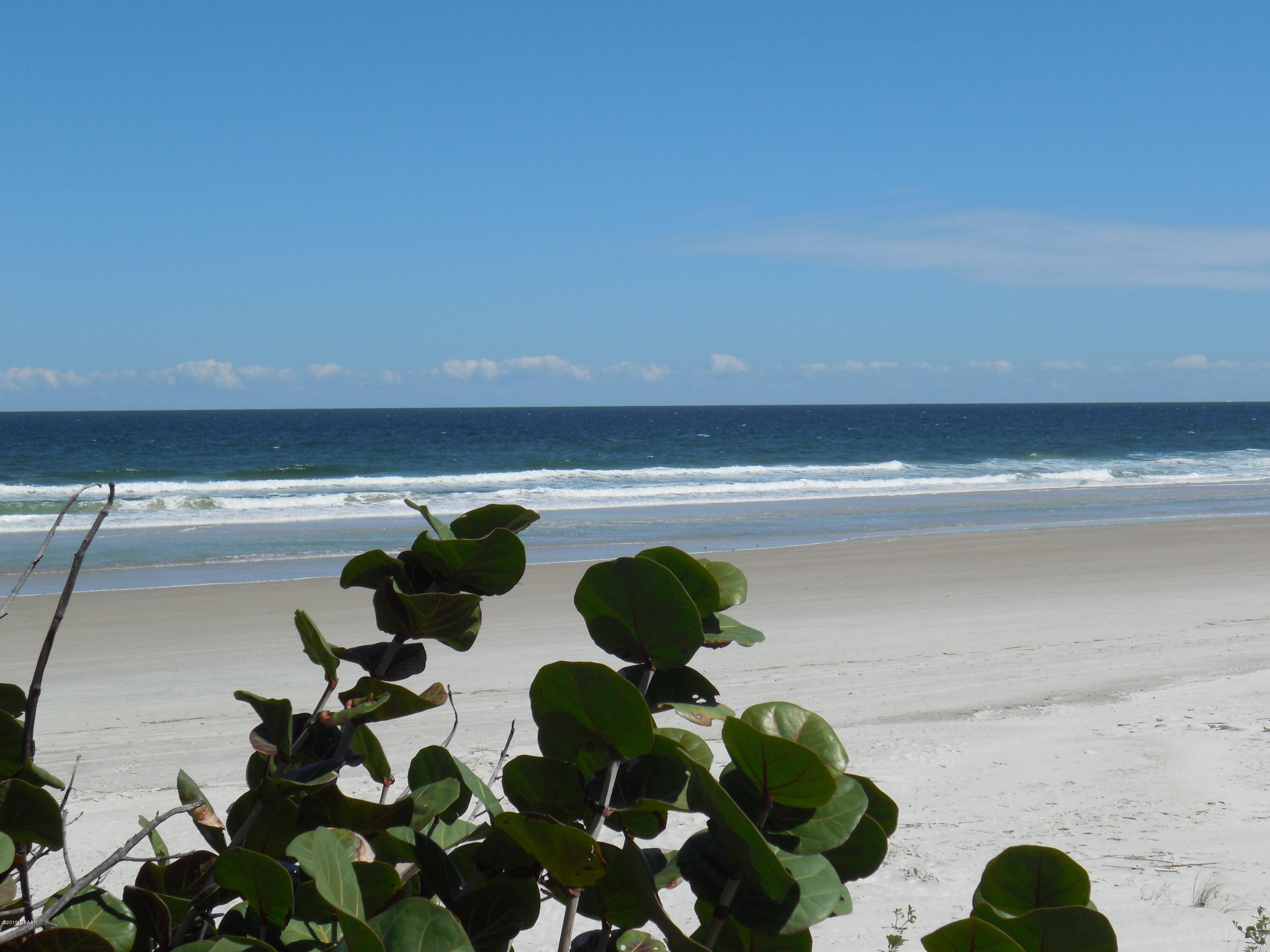 4495 Atlantic Ponce Inlet - 2