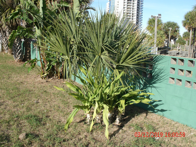 2539 Coral Daytona Beach - 24