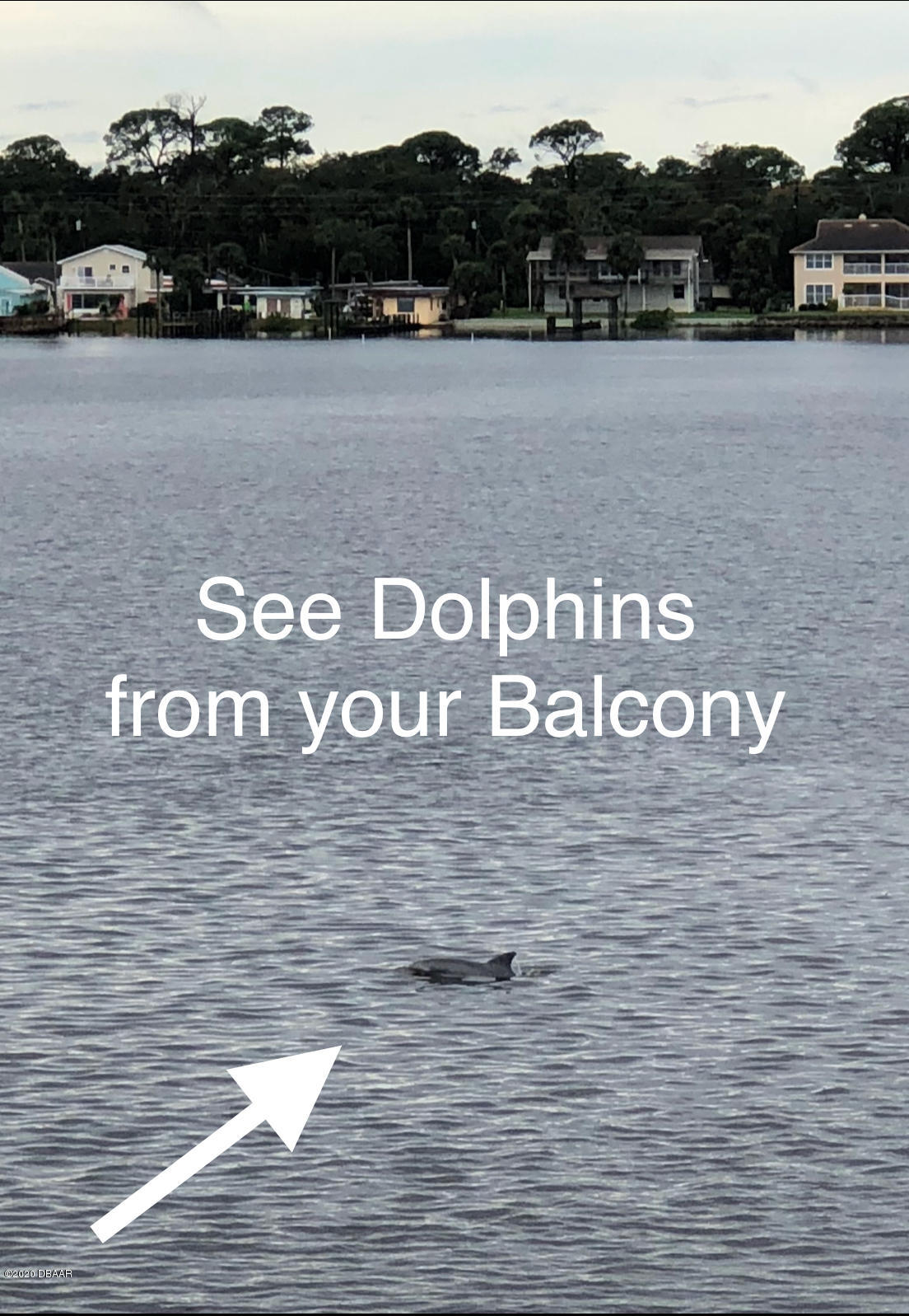 2711 Halifax Daytona Beach - 17