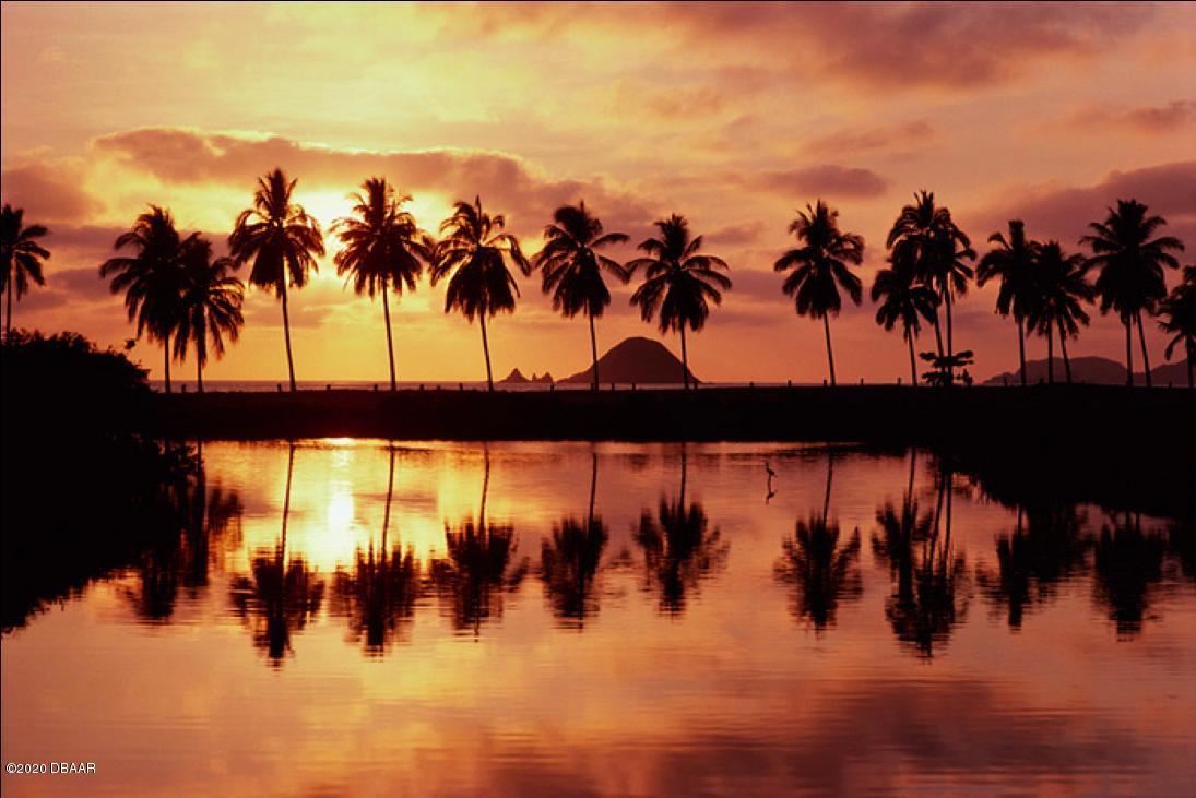 Photo of Mexico, Ormond Beach, FL 32176