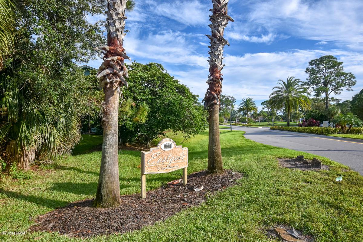 171 Grey Widgeon Daytona Beach - 58
