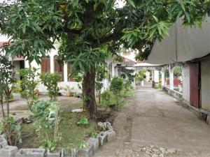 Casa En Venta En Distrito Nacional - Gazcue Código FLEX: 18-862 No.6