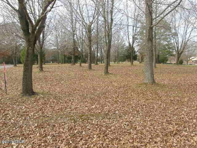 MLS#:425520 Address:  Lot 14 Denali Lane Carterville 62918