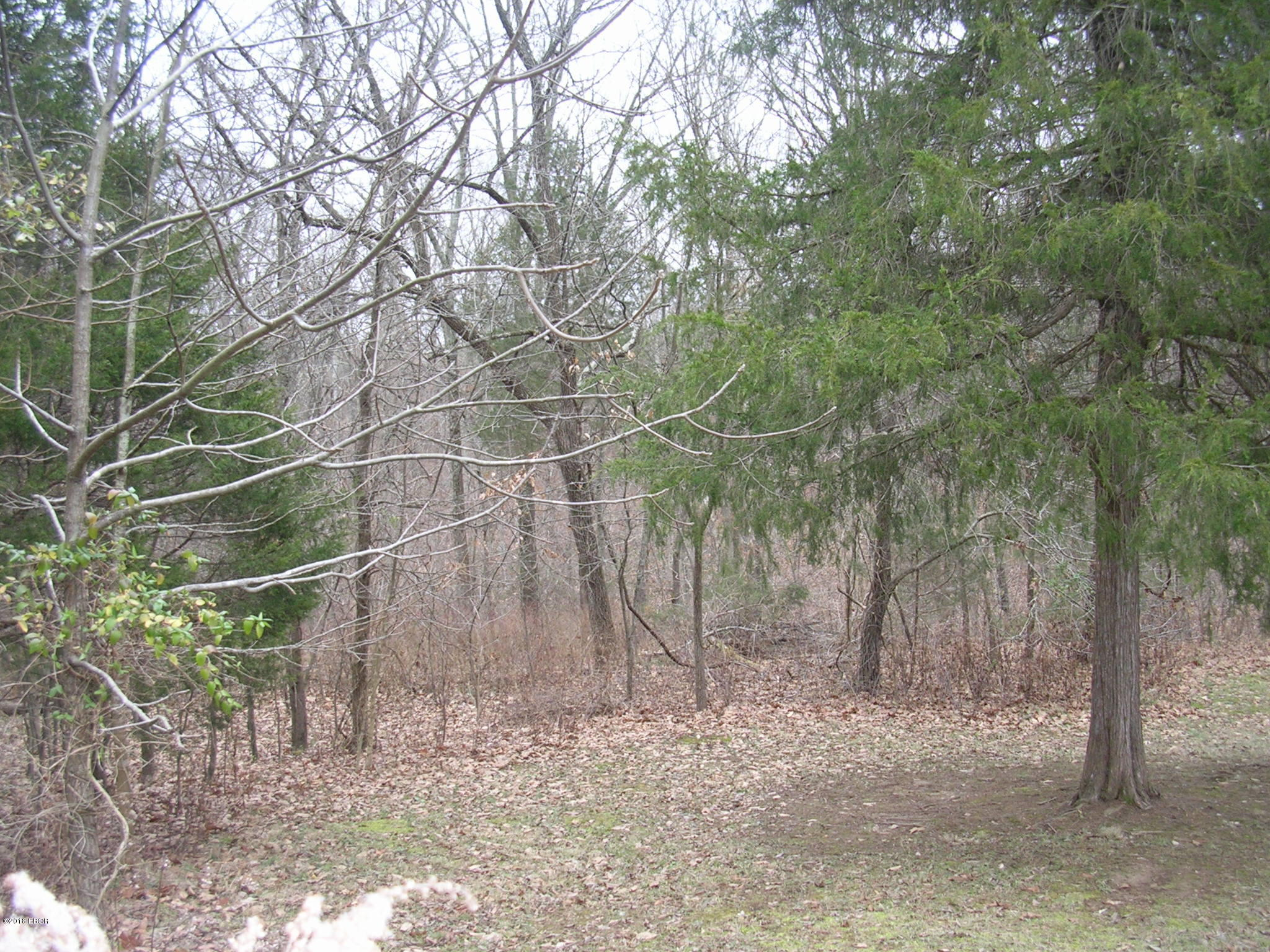 MLS: 425136: 0000 Indian Creek Drive Goreville