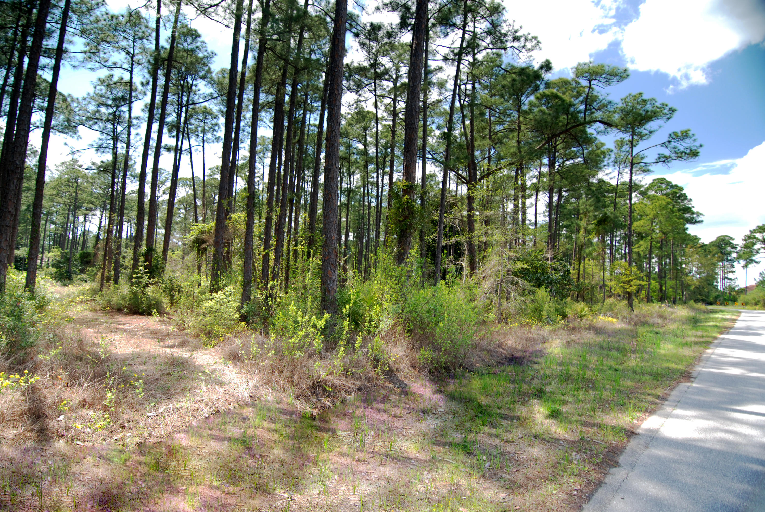 Photo of home for sale at LOT H19 Driftwood Point, Santa Rosa Beach FL