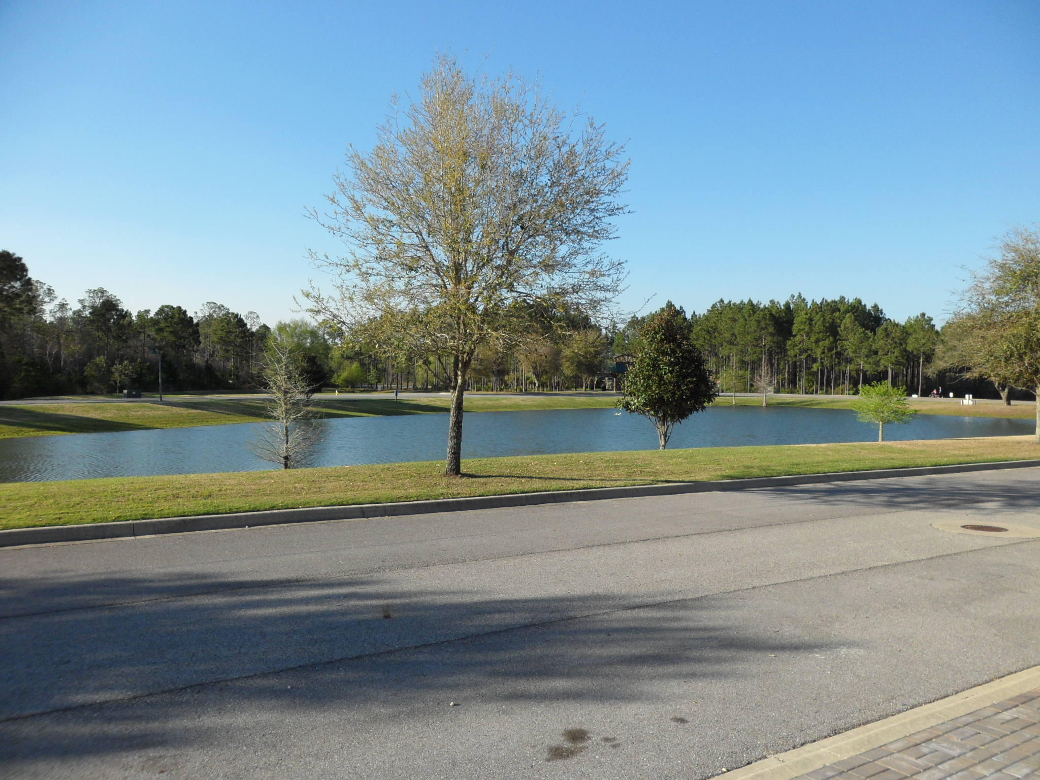 Photo of home for sale at 120 Fanny Ann, Freeport FL