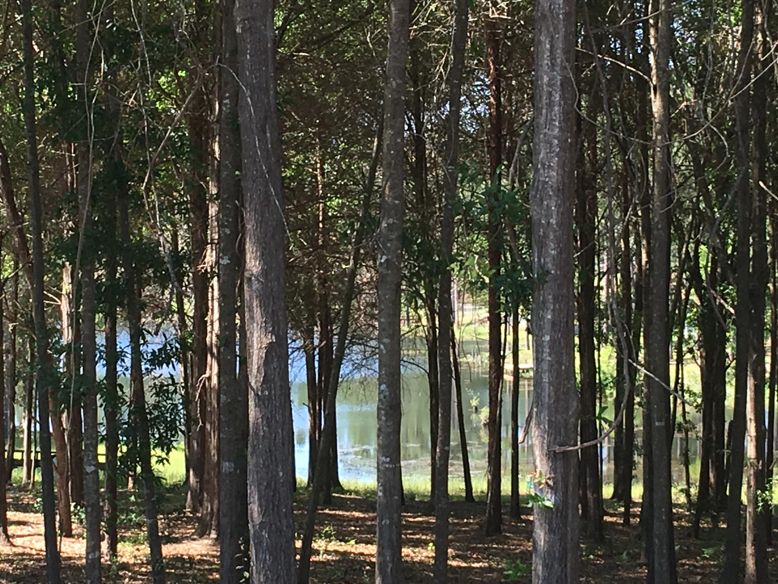 Photo of home for sale at Lot 31-A Sonny, Crestview FL