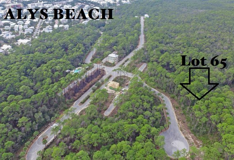 Lot 65 Silver Maple,Seacrest,Florida 32461,Vacant land,Silver Maple,20131126143817002353000000