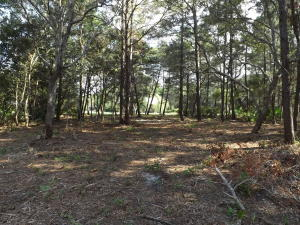 Property for sale at Lot 6 Turtle Creek Drive, Santa Rosa Beach,  FL 32459