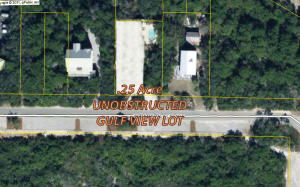 Property for sale at 236 W Park Place Avenue, Inlet Beach,  FL 32461