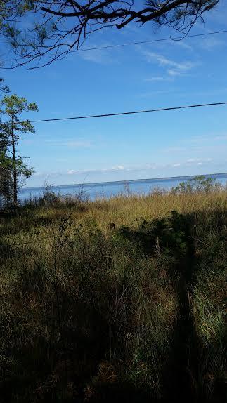 Photo of home for sale at Lot 38 Daisy, Santa Rosa Beach FL