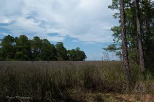 Property for sale at Lot 22 Taurus Drive, Santa Rosa Beach,  FL 32459