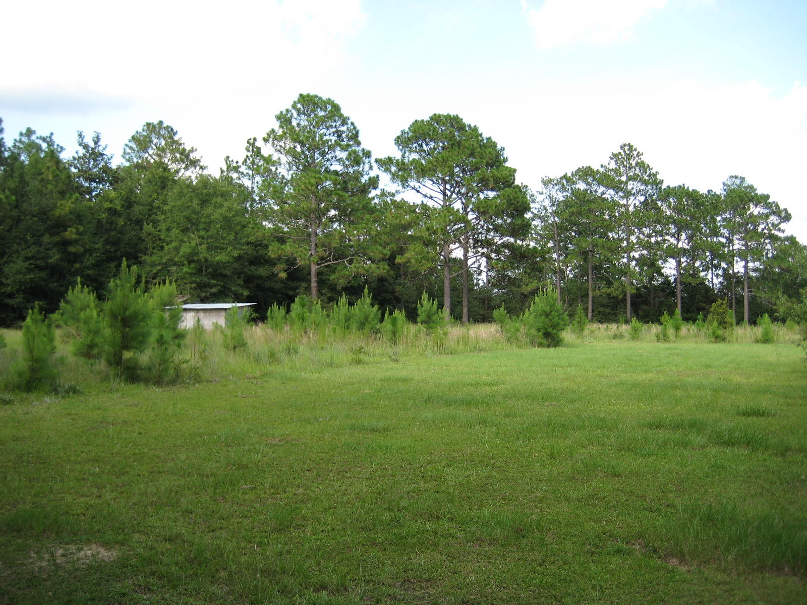 Photo of home for sale at 3547 Auburn, Crestview FL