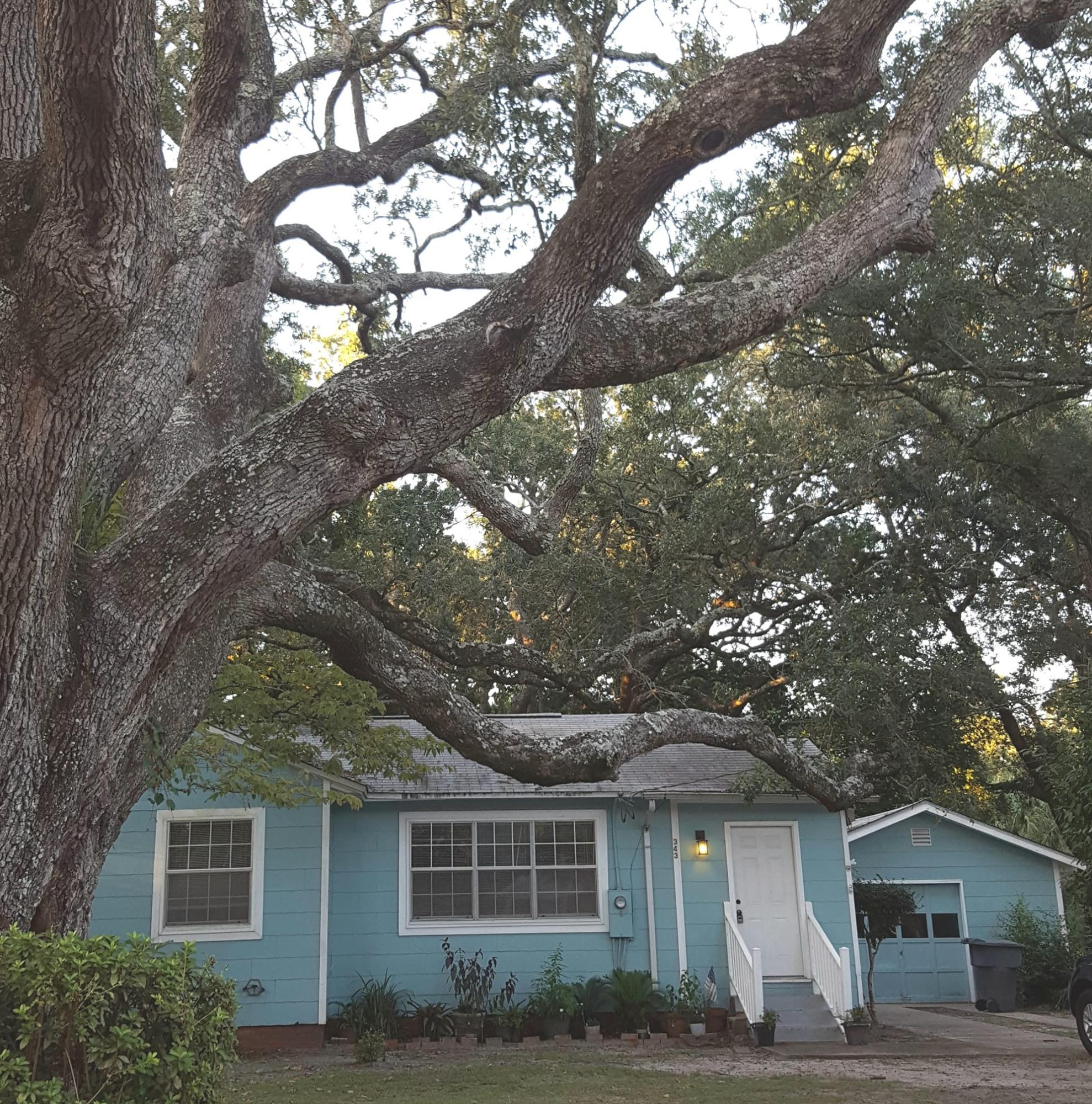 Photo of home for sale at 343 Brooks, Fort Walton Beach FL