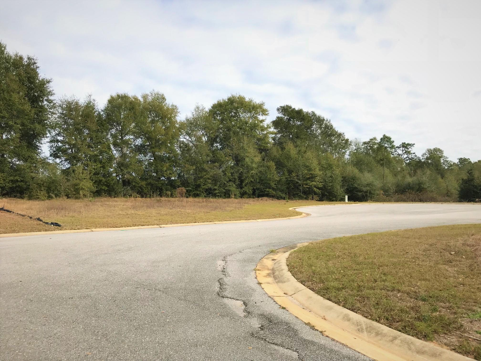 Photo of home for sale at Lot 31 Lena, Baker FL