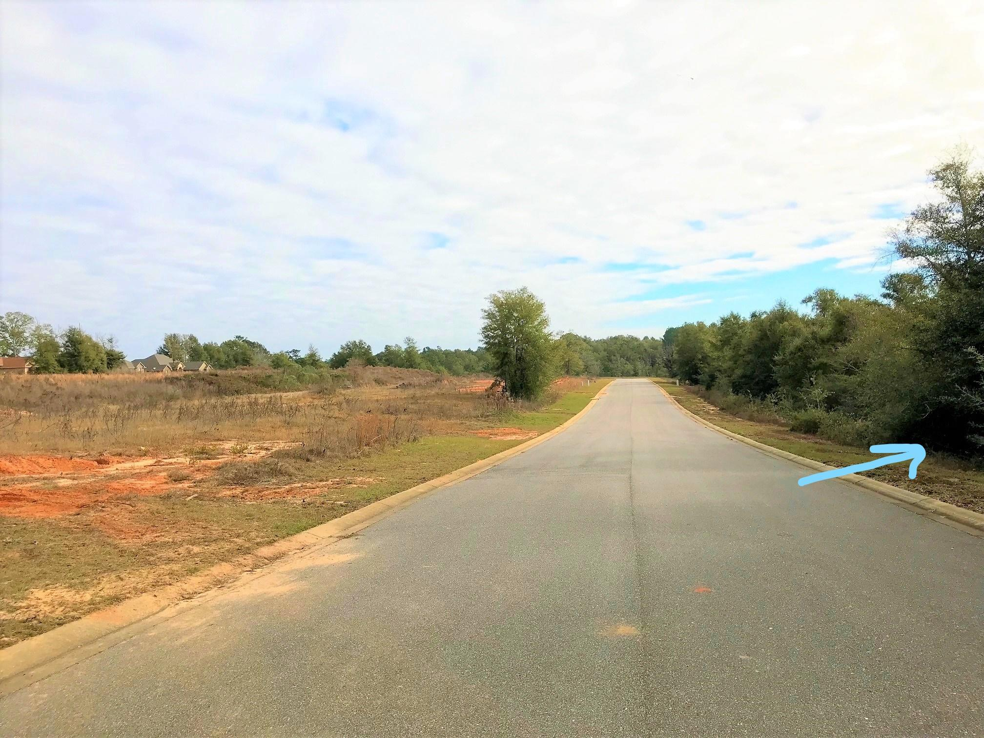 Photo of home for sale at Lot 9 Lena, Baker FL