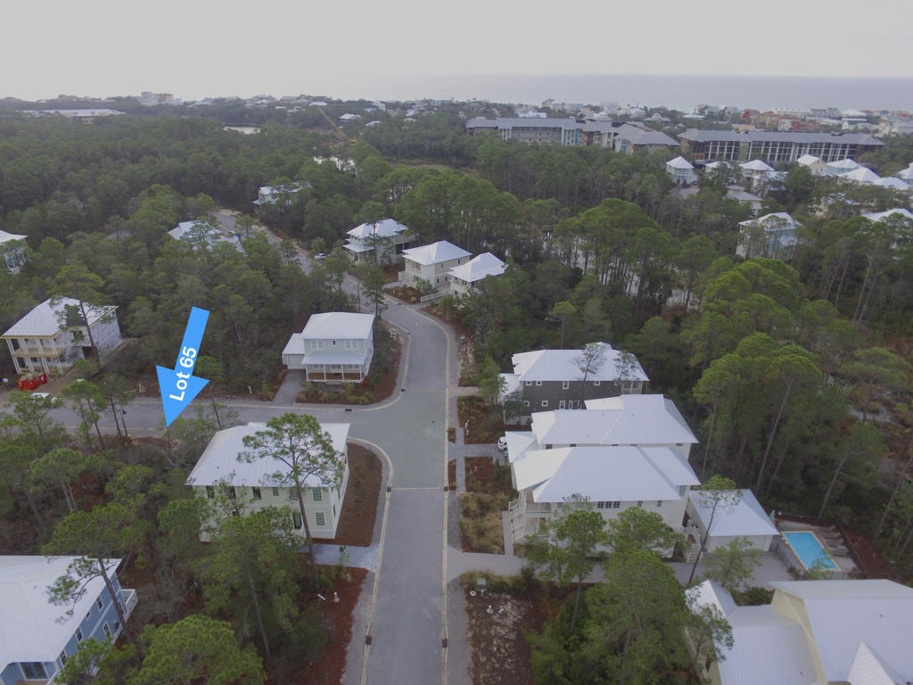 Lot 65 Ibis,Santa Rosa Beach,Florida 32459,Vacant land,Ibis,20131126143817002353000000