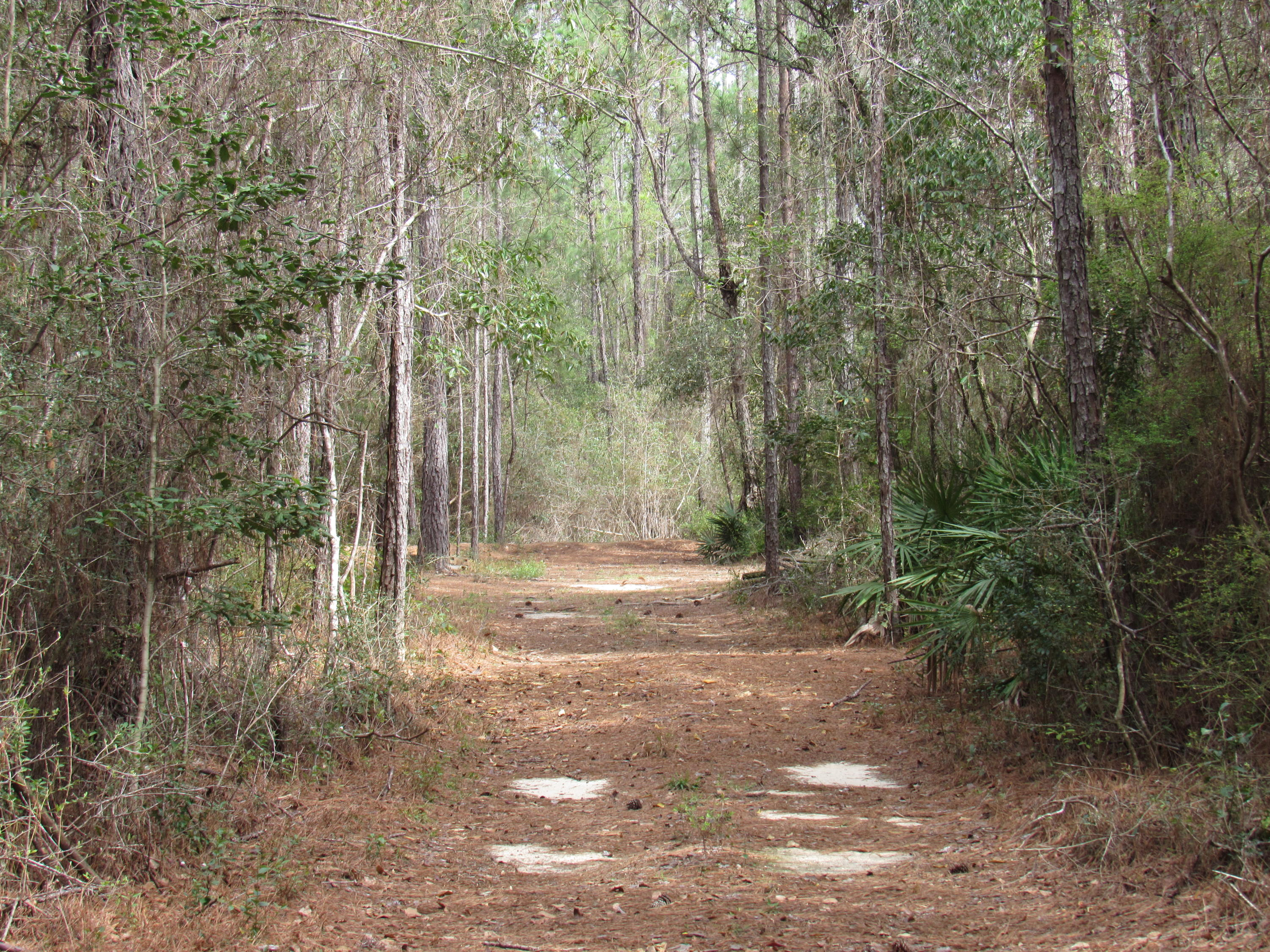 Photo of home for sale at 20 +/- AC Eagles Way, Defuniak Springs FL