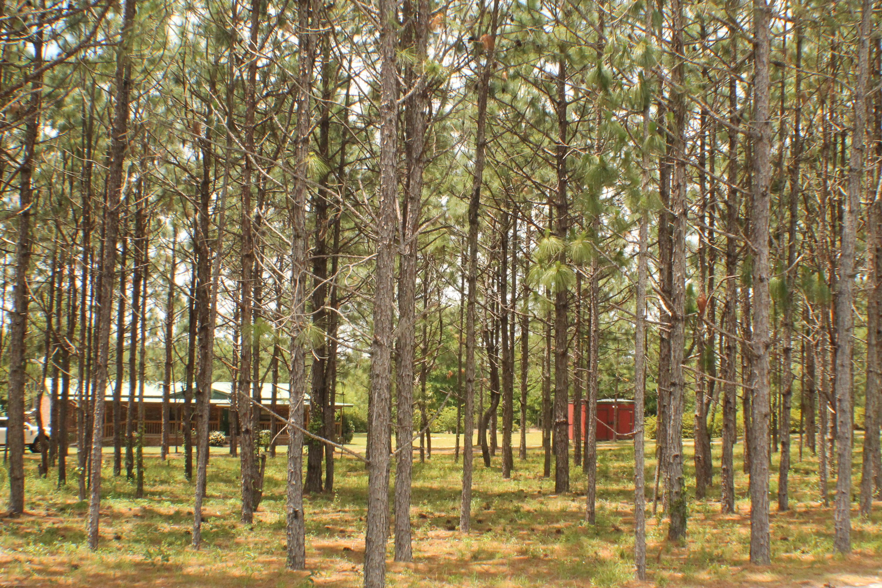 Photo of home for sale at 6214 Hwy 4, Baker FL