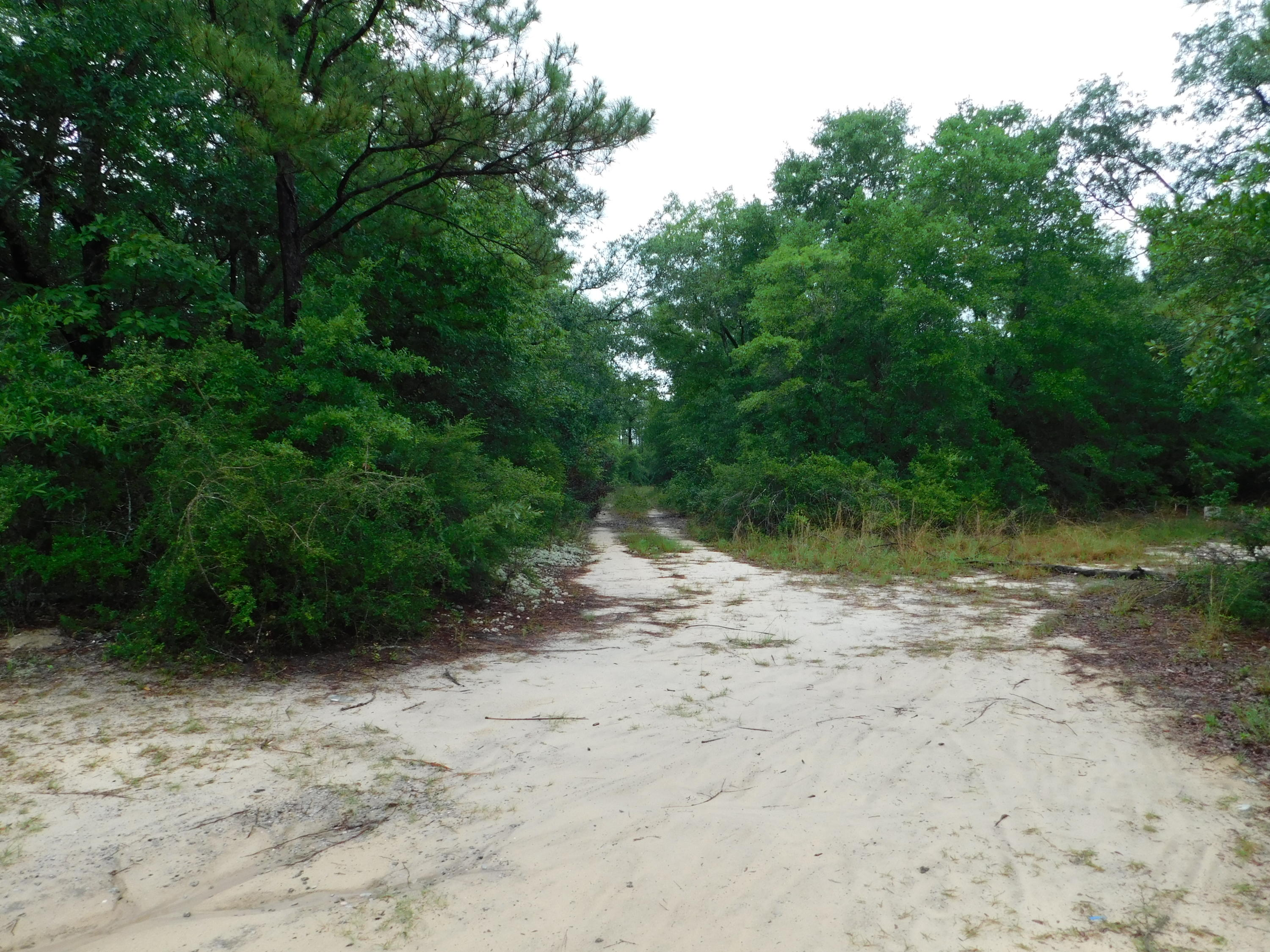 Photo of home for sale at 5450 Clint Mason, Crestview FL