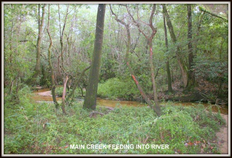 Photo of home for sale at 00 Co Highway 1087, Defuniak Springs FL