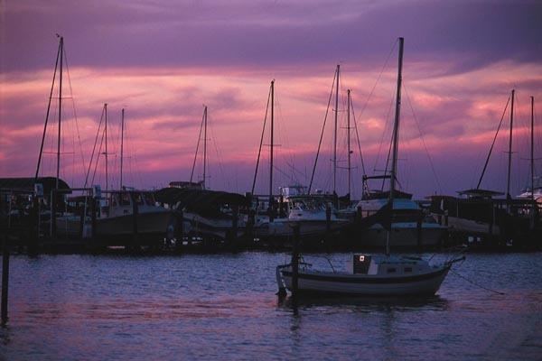 Photo of home for sale at 3573 Preserve, Miramar Beach FL