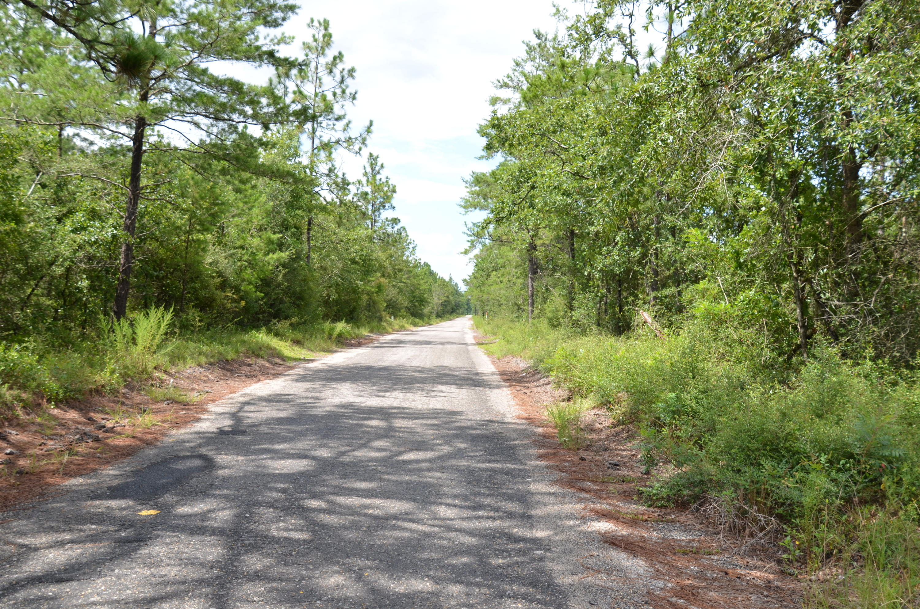 Photo of home for sale at TBD Watson, Defuniak Springs FL