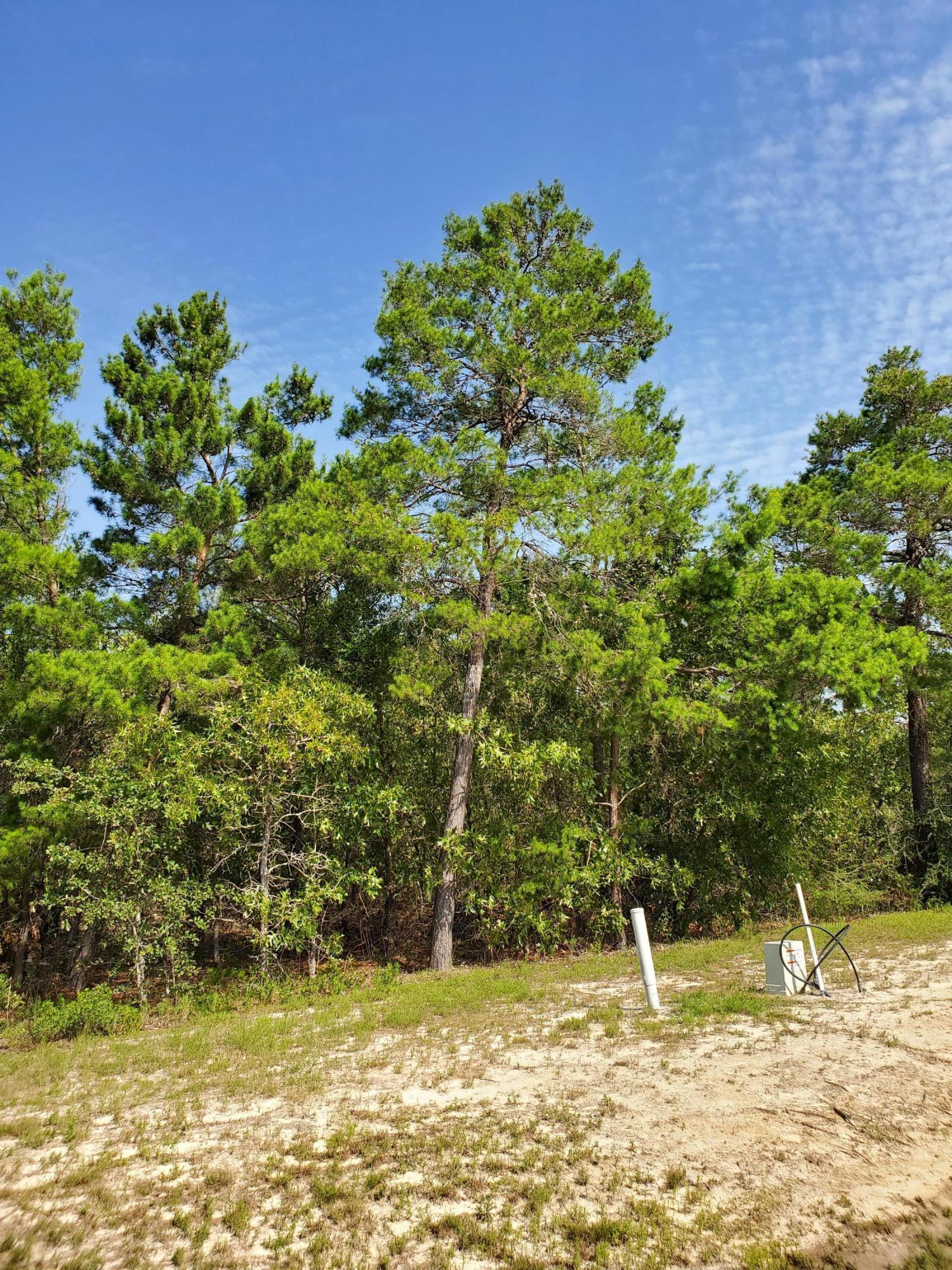 Photo of home for sale at TBD Lot 14 Coastal Breeze, Freeport FL
