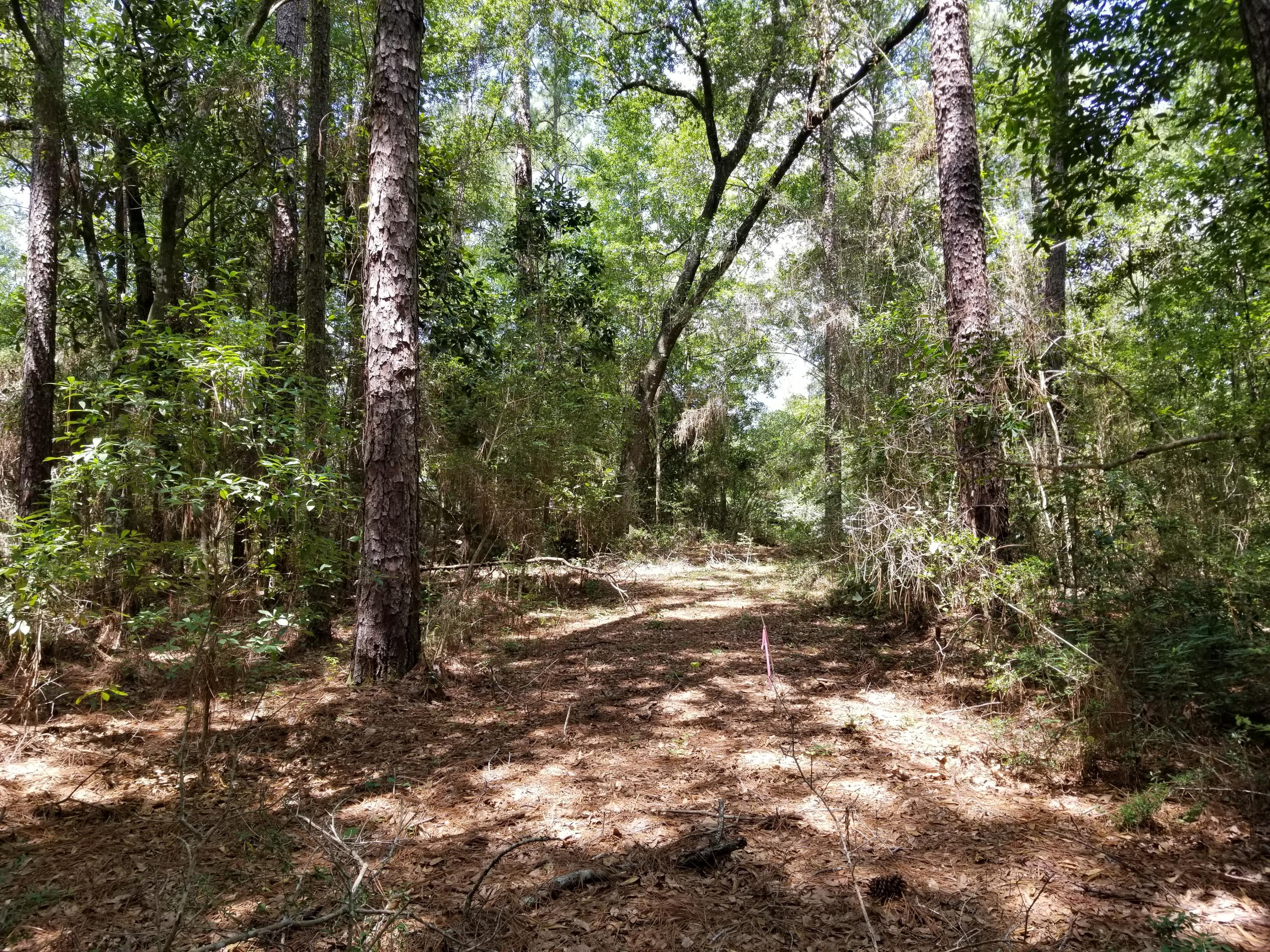 Photo of home for sale at 5.49 Acres White Oak, Crestview FL