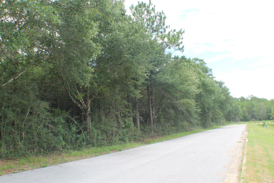 Photo of home for sale at Lot 3 Wild Hare, Crestview FL