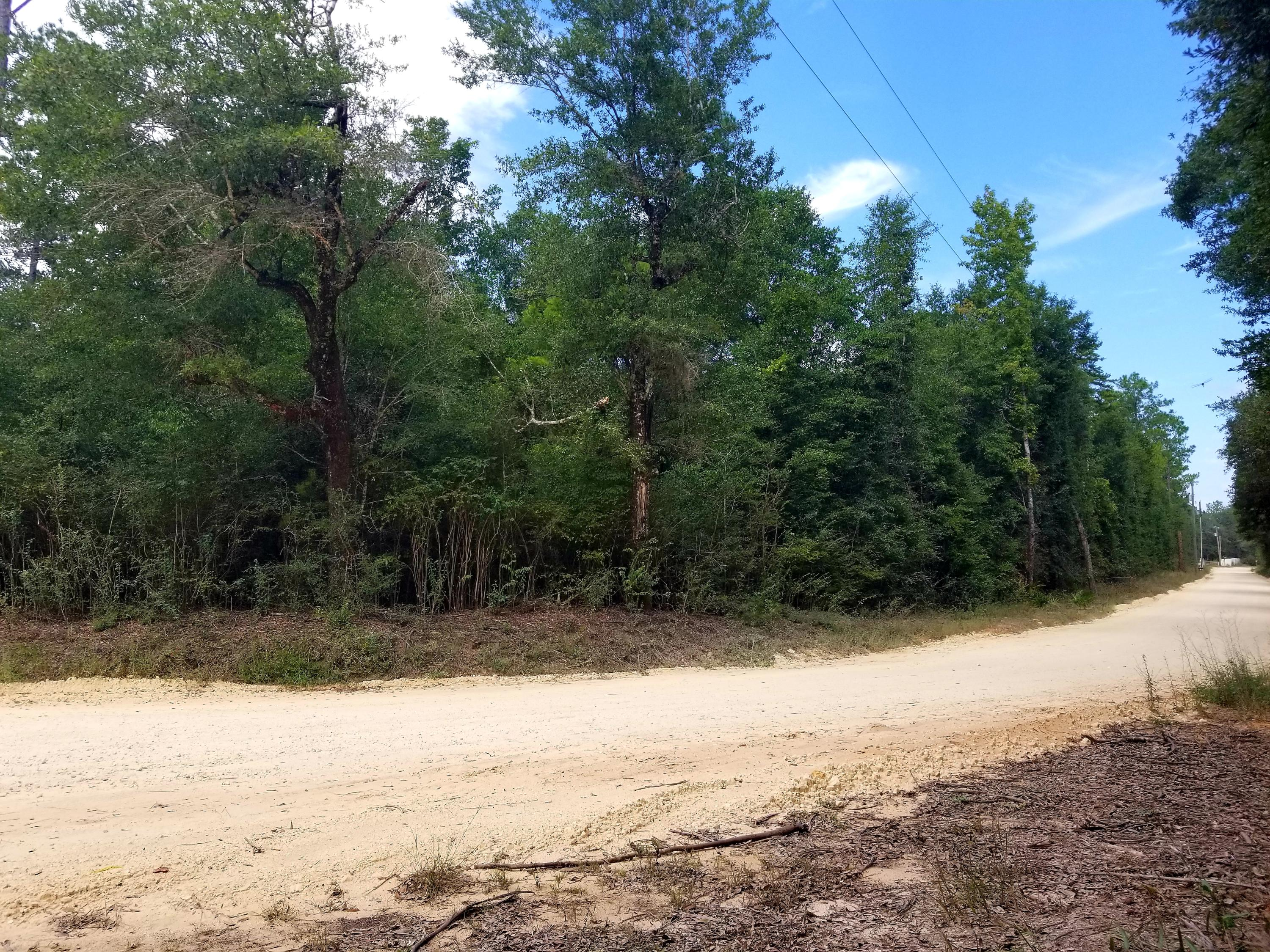 Photo of home for sale at 1.2 Ac xxx Yellow River-Log Lake, Holt FL