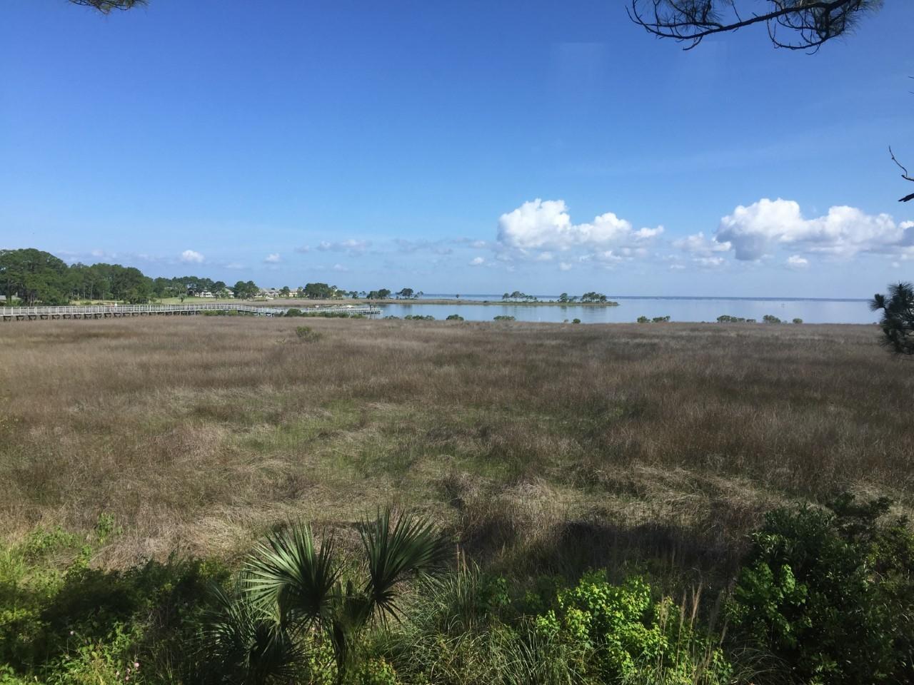 Photo of home for sale at 8997 Heron Walk, Miramar Beach FL