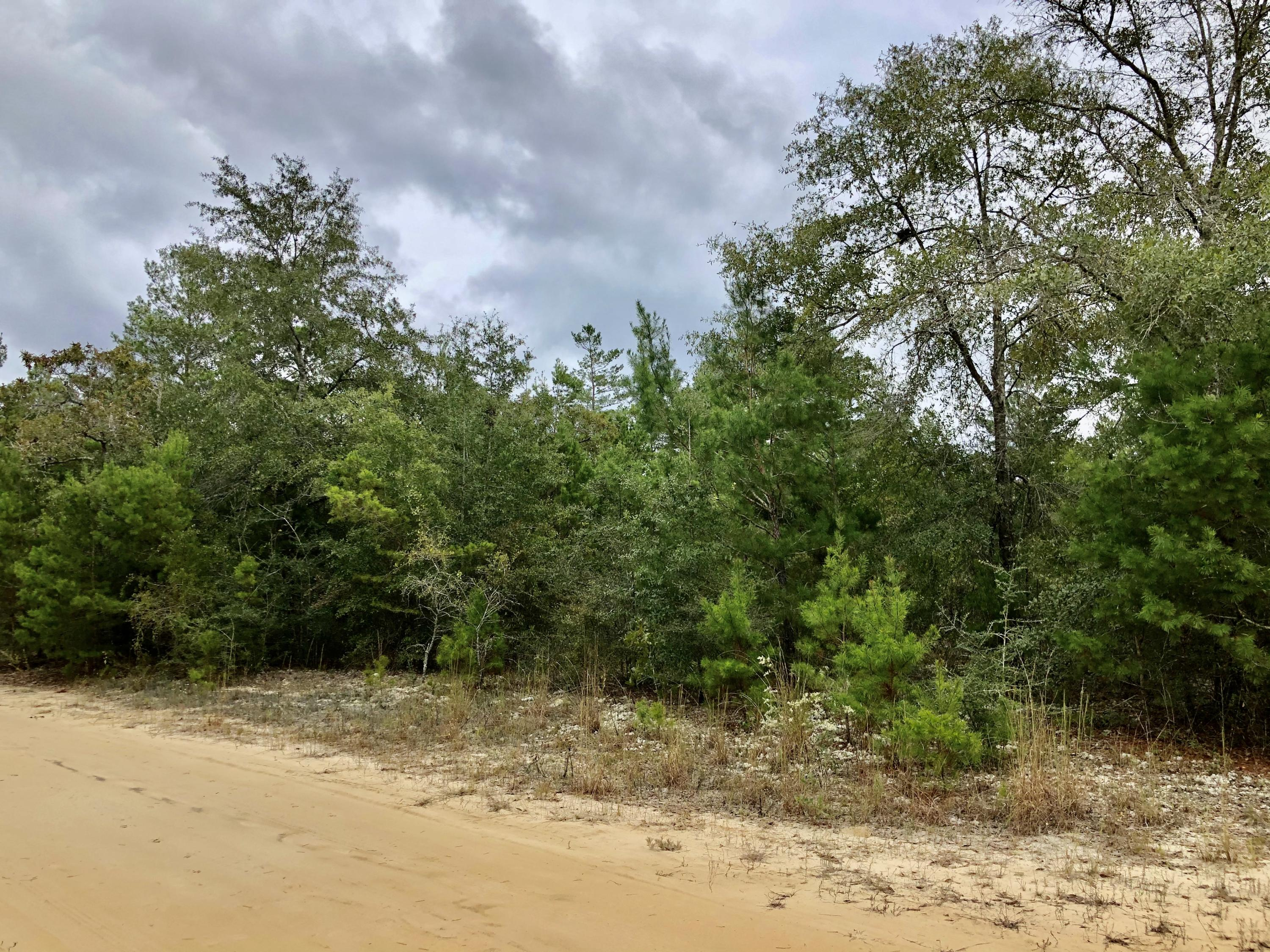 Photo of home for sale at Lot 7 Bret Dr., Defuniak Springs FL