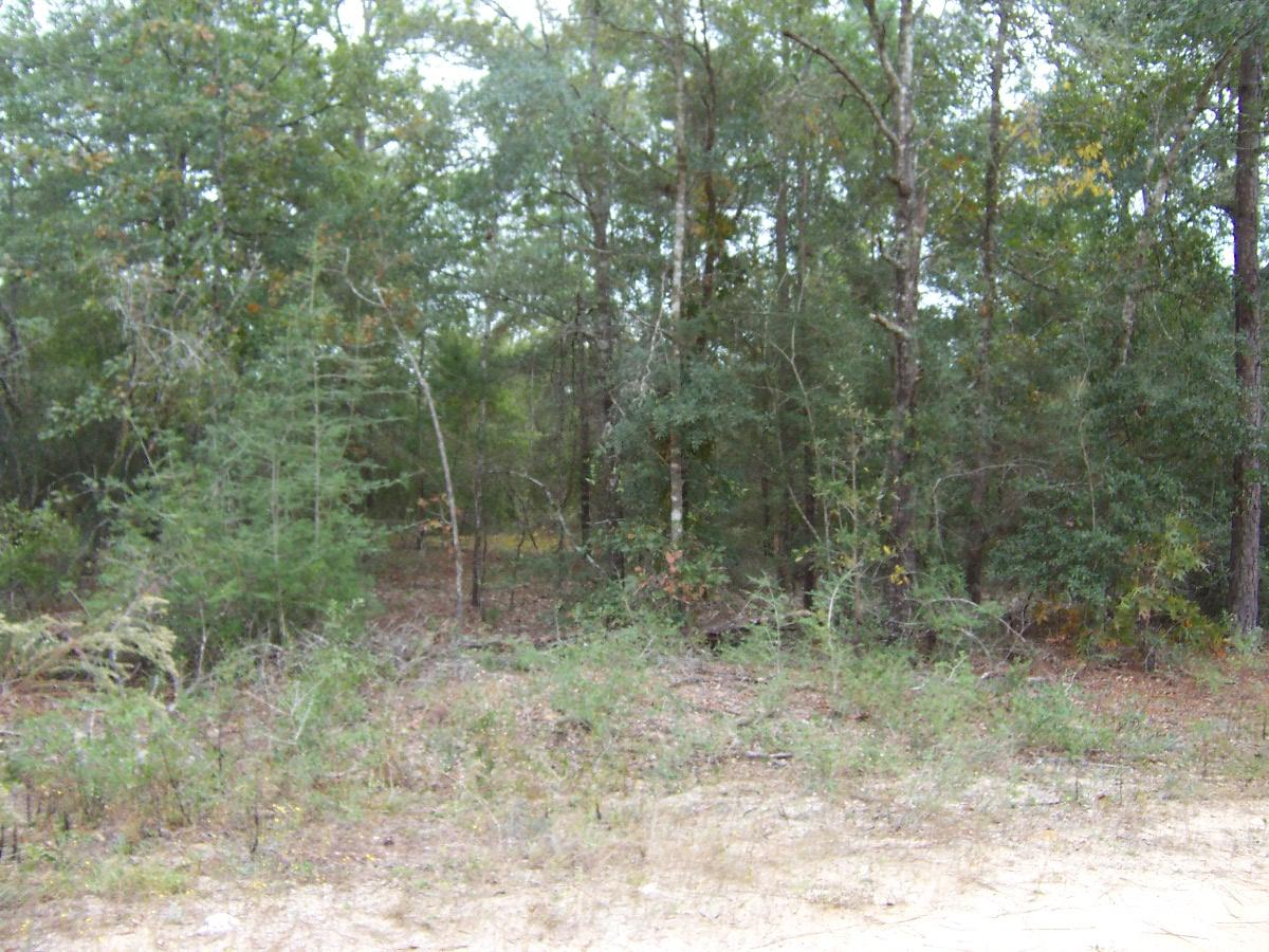 Photo of home for sale at 4 lots Michaelangelo, Defuniak Springs FL