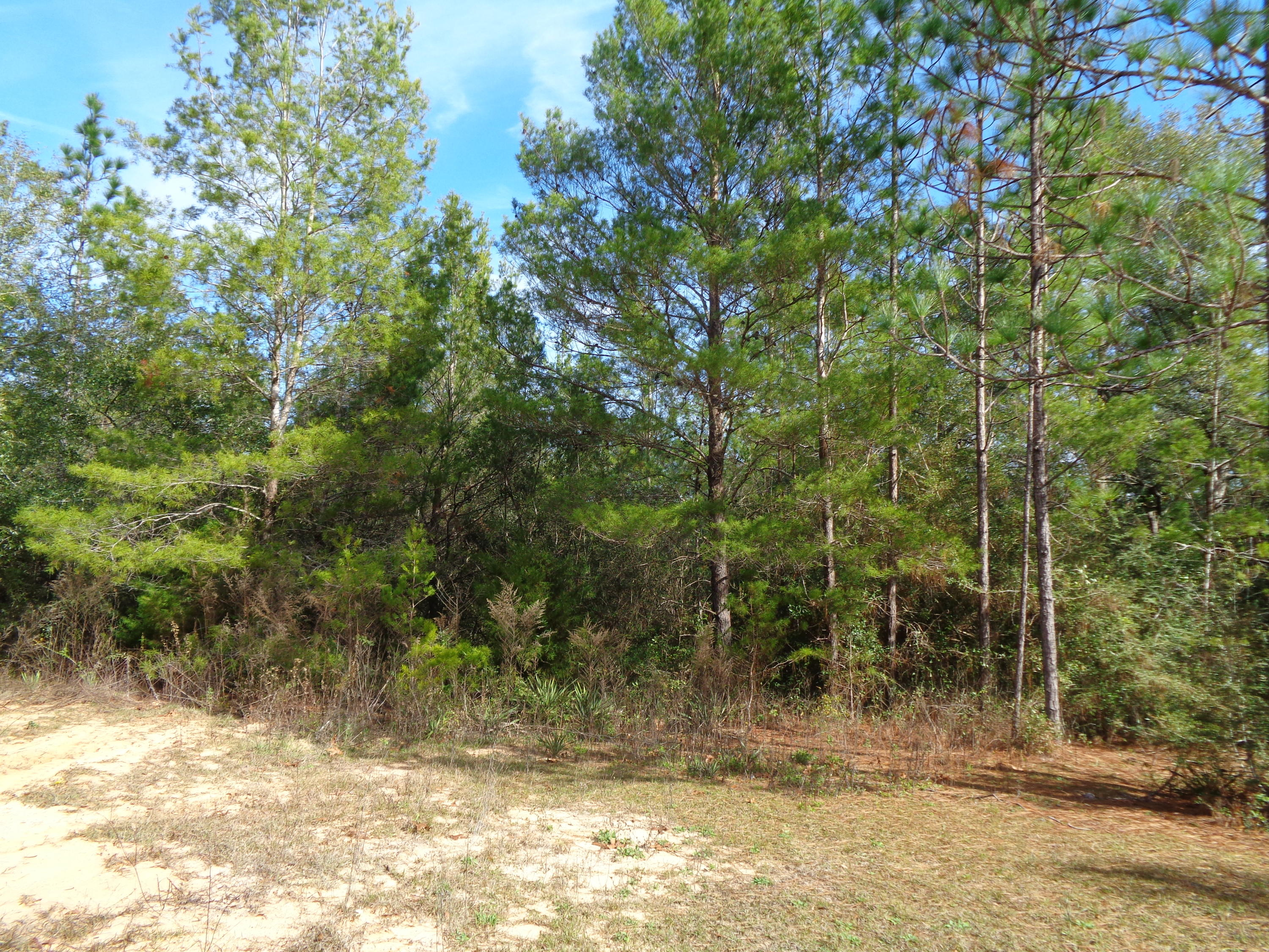 Photo of home for sale at 6 Fernwood Ct W, Defuniak Springs FL