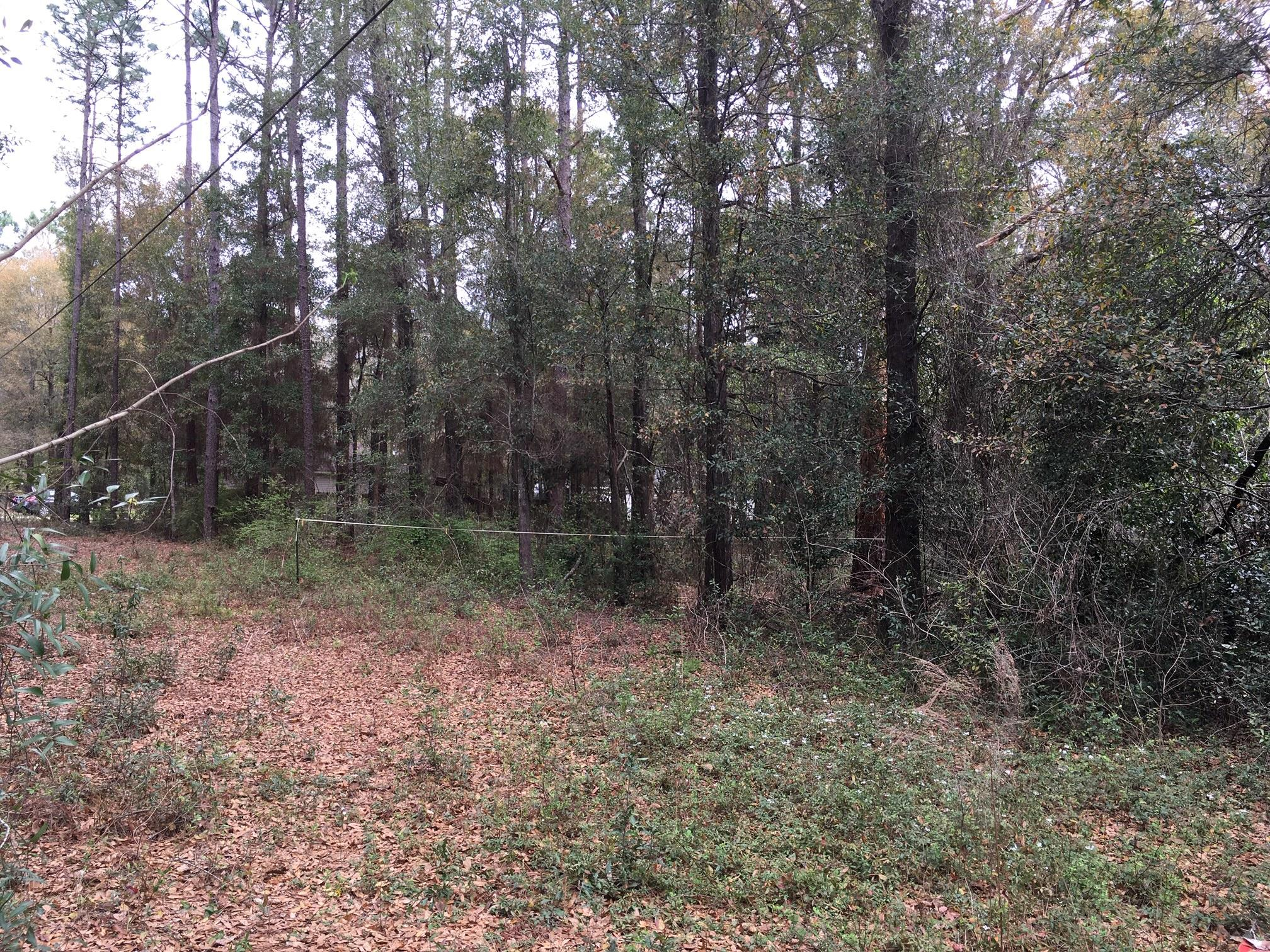 Photo of home for sale at Lot 9 Liberty, Holt FL
