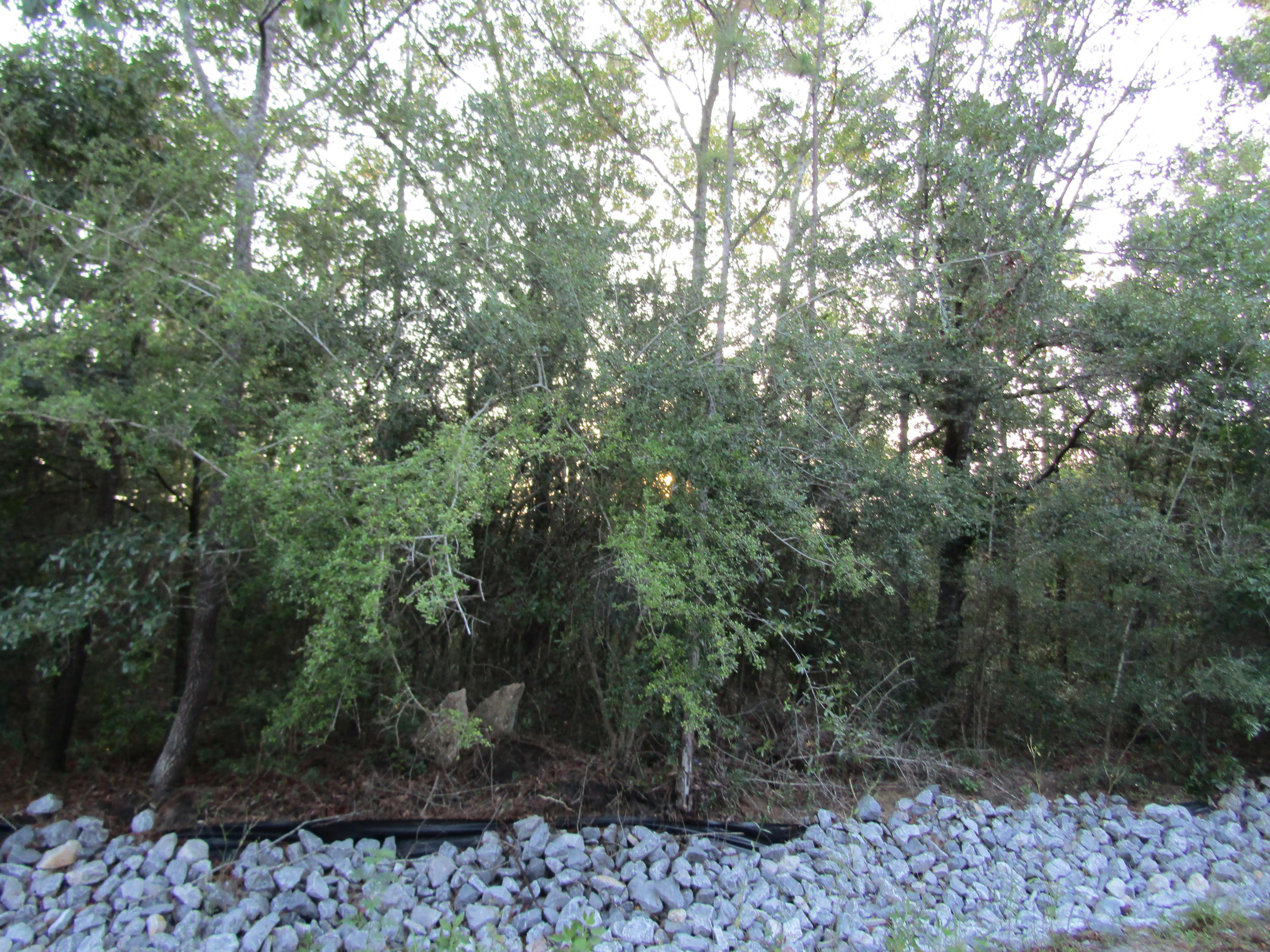Photo of home for sale at Lot 13 Hermitage, Defuniak Springs FL