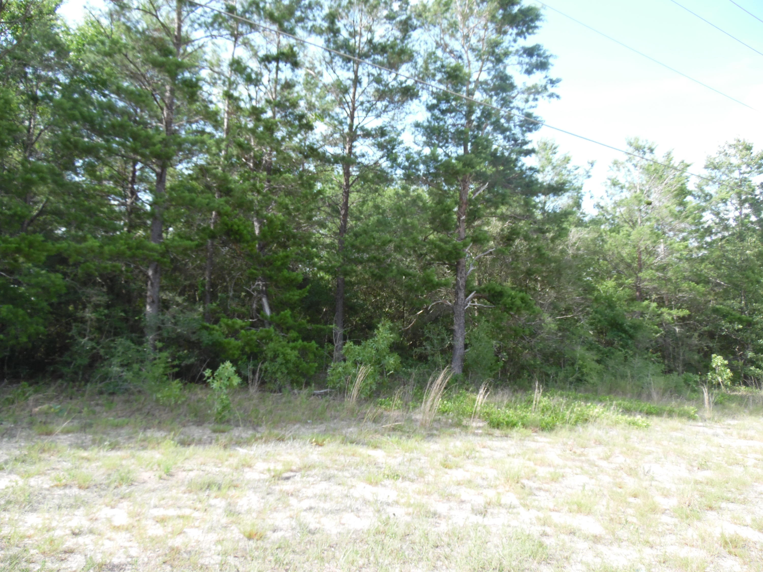 Photo of home for sale at Lot 25 Hwy 90 West, Defuniak Springs FL
