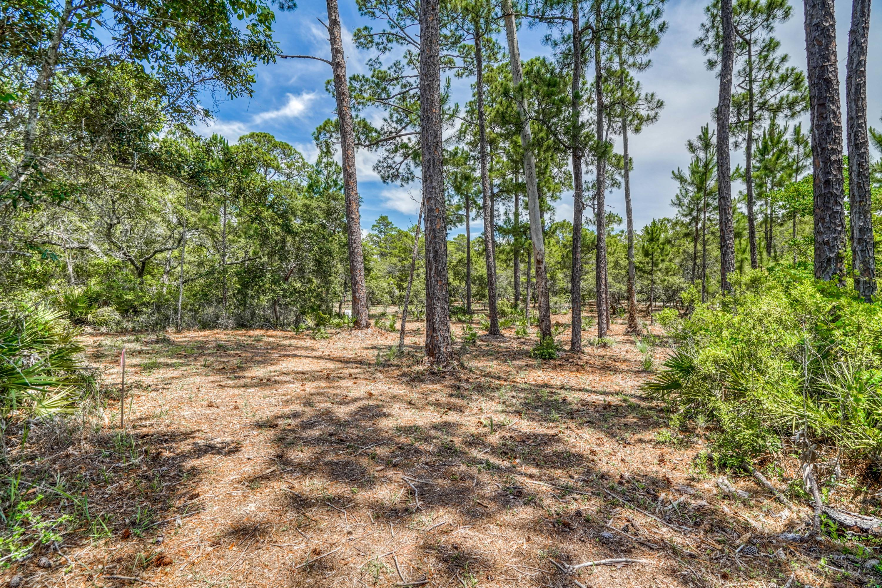 Photo of home for sale at Lot 7 Old Miller, Santa Rosa Beach FL