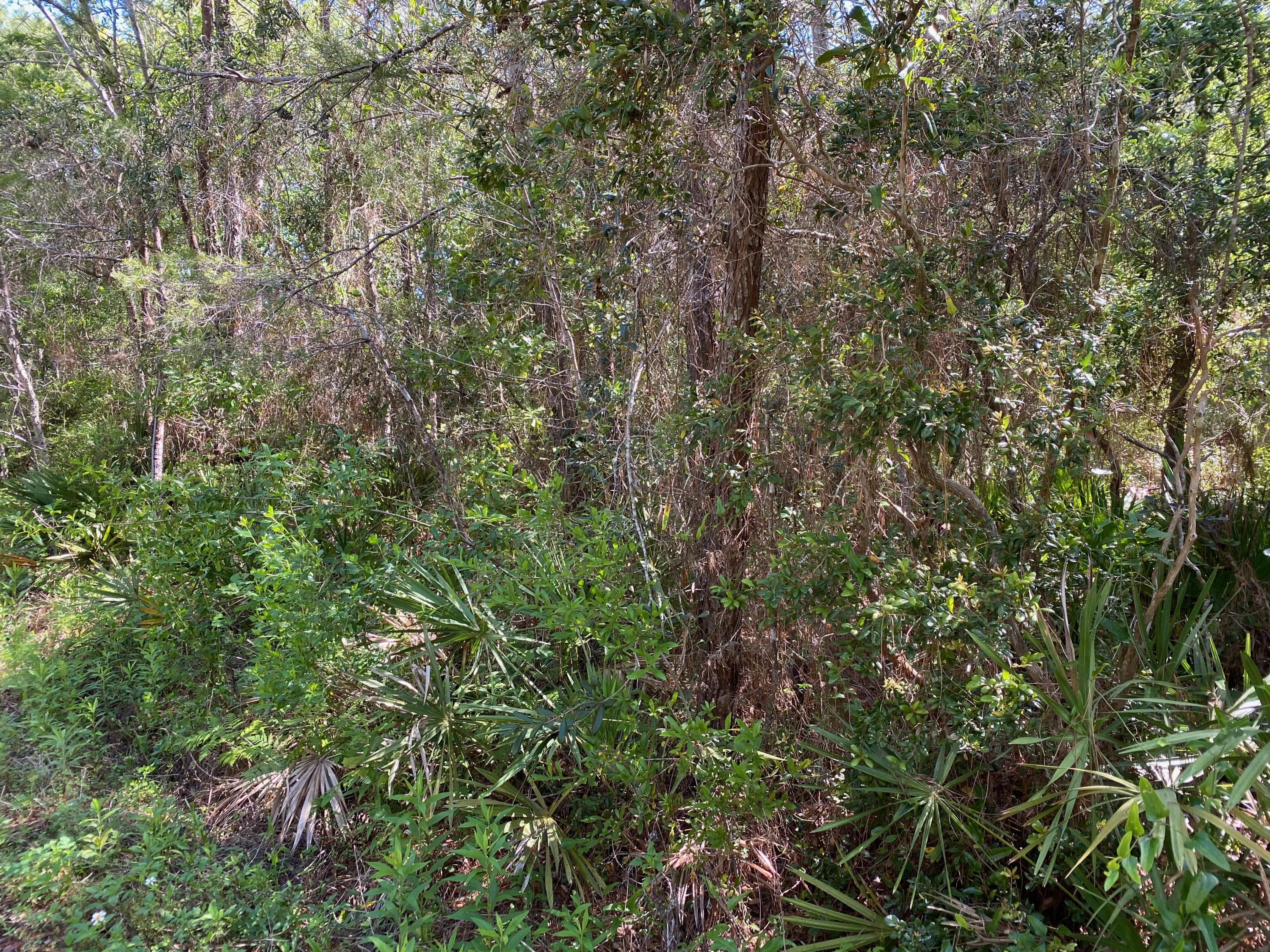 Photo of home for sale at Lot D Bayshore, Freeport FL