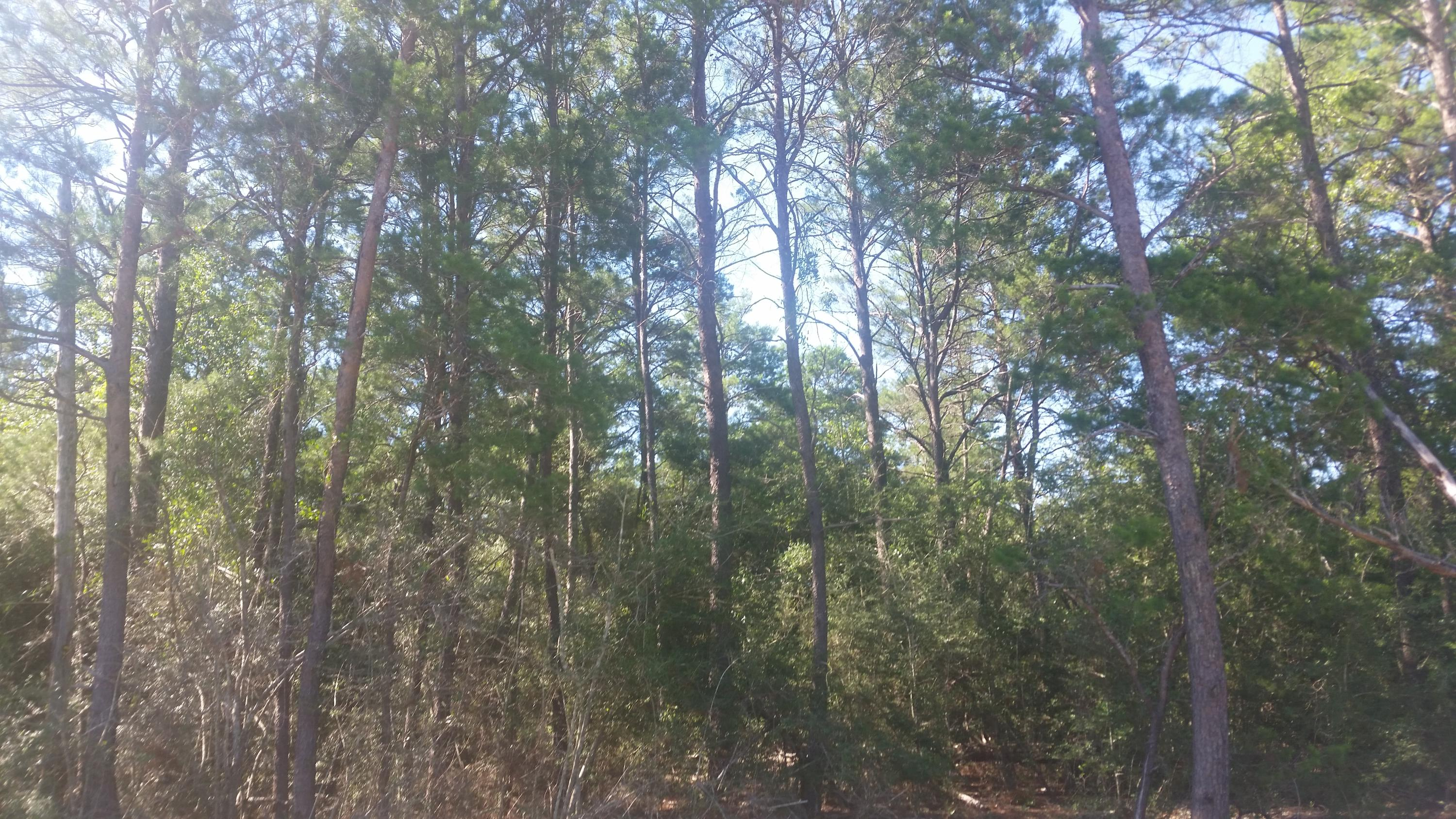 Photo of home for sale at Lot 24 Us-90, Defuniak Springs FL