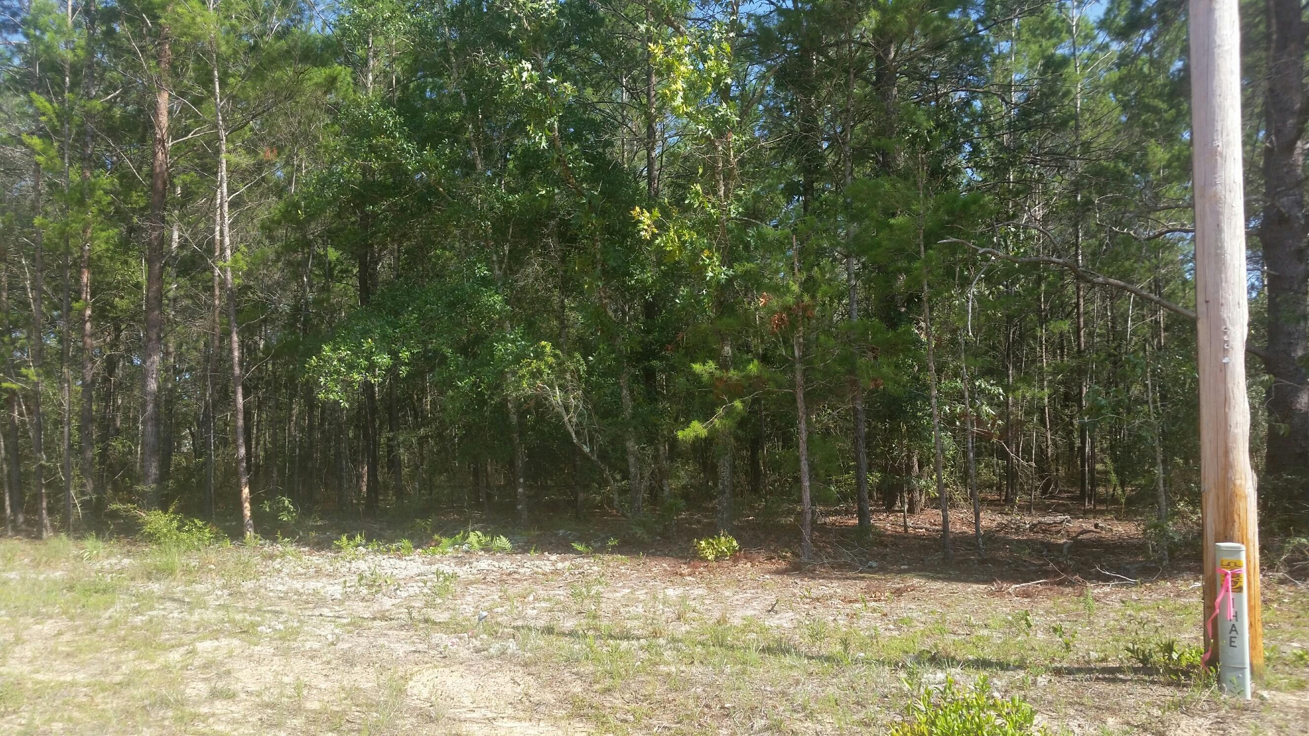 Photo of home for sale at Lot 2 Violet, Defuniak Springs FL
